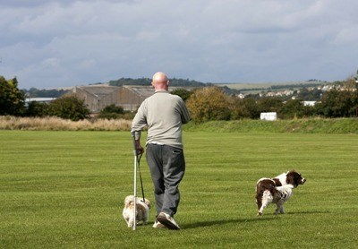Dog Owners Have Better Health 400