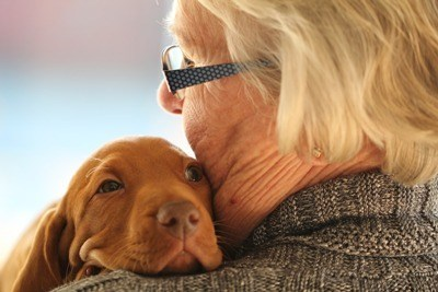 Hugging a Dog Improves Heart Health 400